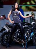 http://img51.imagetwist.com/th/02945/vkrf60cib6nd.jpg